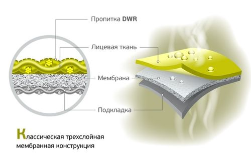 Строение мембранной ткани